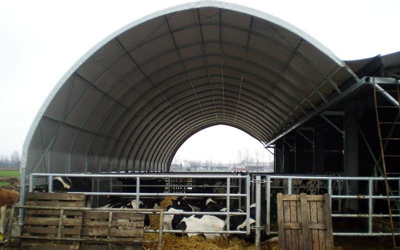 Tunnels for livestock