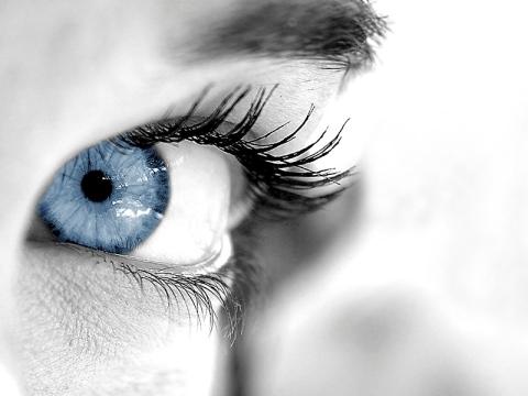studio della vista